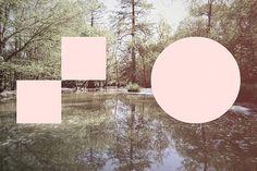B.D.S. | Flickr – Condivisione di foto!