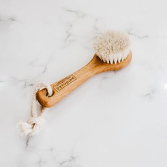 This beechwood face brush offers a multitude of health benefits. Its natural horse-mane hair allows for safe and gentle exfoliation leading to unclogged pores, improved lymph circulation, and increased blood flow. Using locally sourced materials, this tool is masterfully handcrafted by brush artisans through ethical methods in the Black Forest of Germany.