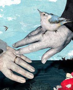 Most Recent : Tara Hardy Illustrations #tara #hardy #collage #art