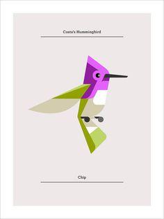 Lumadessa_Hummingbirds_01 #hummingbird