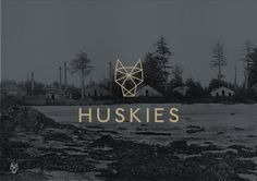 Stylo Design — Design & Digital Consultancy — Huskies #logo #branding