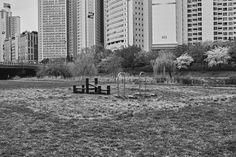 Legs of the City, the City of Legs. 2015. Seoul, Korea. ©kyū saŋ lee