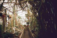 BRICK HOUSE #green house