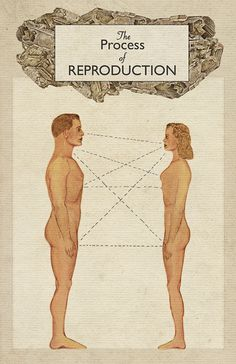 The Process of Reproduction I by Heather Landis