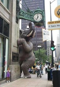 Elephant sculpture / street art