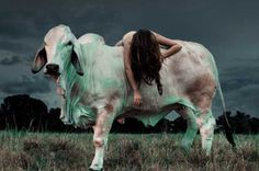 Beefcakes by Allyson Anne Lamb #inspiration #photography #art