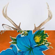 butdoesitfloat.com - Images #flower #deer