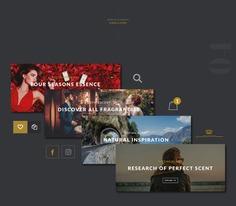 Gothicscent - Website Elements #website #web #design #ui #ux #interface #designbyorimat #perfume #ecommerce #icon #slides