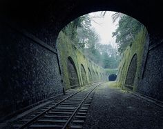 nature-reclaiming-abandoned-places-13 #abandoned #photography #railway