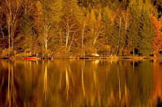 #water#autumn#nature#outdoors#trees
