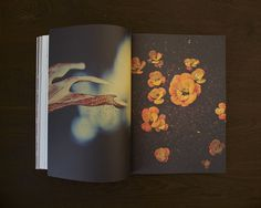 NEVERTHELESS 04 on the Behance Network #photography #magazine