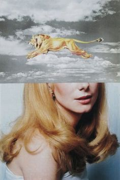 Dan%2BBina%252C%2BSincerely%252C%2Bcollage%252C%2B11-11-11-c%2Bcopy.jpg (JPEG Image, 481x720 pixels) #woman #sky #bina #lion #dan #blonde #art #collage