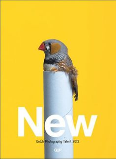 Gup (Netherlands) #cover #magazine #bird