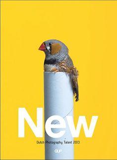Gup (Netherlands) #cover #magazine #bird