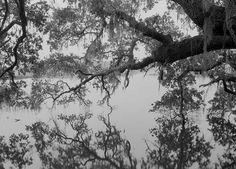 Black and White Photography by Jack Leigh #inspiration #white #black #photography #and