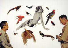 Rare Bird, collage, 2010, #art #collage #vintage #bird #birds