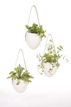 porcelain planters : farrah sit #sit #fara #risd #porcelain #planter
