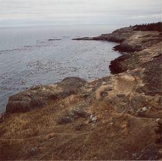 Mikael Kennedy #wilderness #sea #photgraphy
