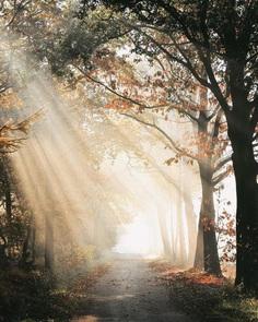 Ronald Jansen Captures the Beauty of Netherlands Through Stunning Landscapes