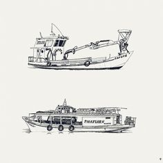 Tigre Studies on the Behance Network #illustration