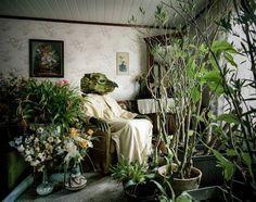 Klaus Pichler, favourite artist #plants #austria #pichler #photography #klaus #green