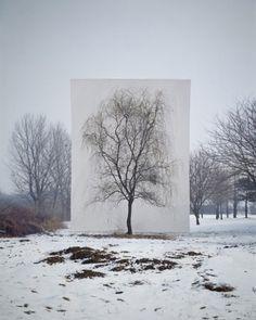 bakmaya değer. #tree #lee #snow #ho #scene #whiteness #myoung
