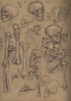 The Journal Portal #illustration #skull #drw