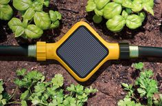 Don't have a knack for gardening? The Garden Sensor won't let you fail! Get status updates right to your phone. The sensor will water the pl #garden #product #design #industrial