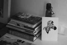 listras #print #esmeraldo #01 #photography #hellovon #zebra #marina