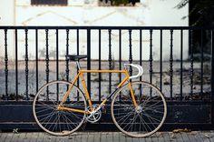 MerckxMondays-04