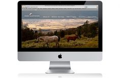 Courtney Goodhart Graphic Designer #horses #nature #web #redesign