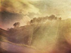 Foragepress.com | Cally Whitham #photography #vintage #landscape