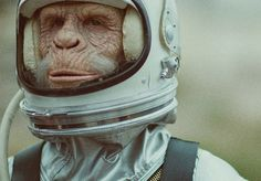 Ben Lee Music Video - WWF Space Monkey | 123 Inspiration