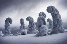 Frozen Giants by Ignacio Palacios