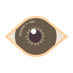 See more icon inspiration related to eye, vision, random, eyes, iris, body parts, medical, ophthalmology and spiral on Flaticon.