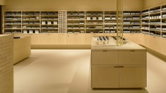 Aesop LUCUA 1100 by Schemata Architects