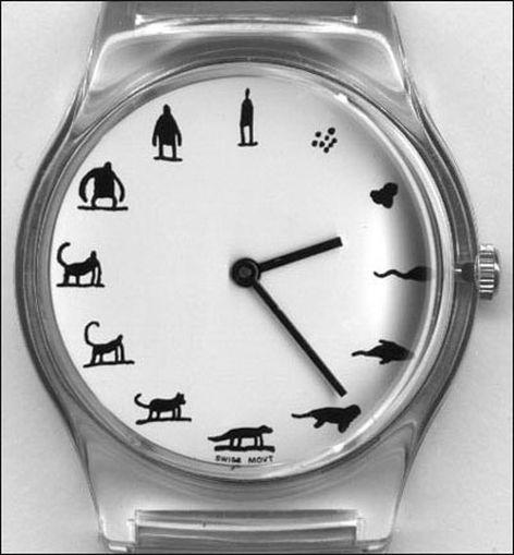 Днем, видео картинка часов приколы