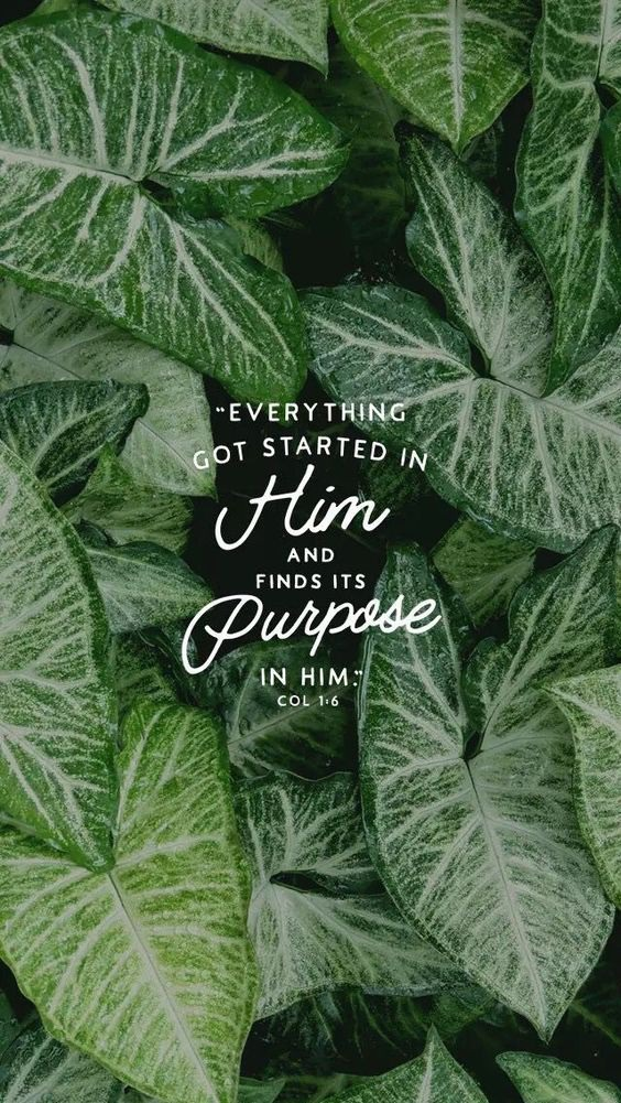 Everything Got Started in Him and Finds its Purpose in Him