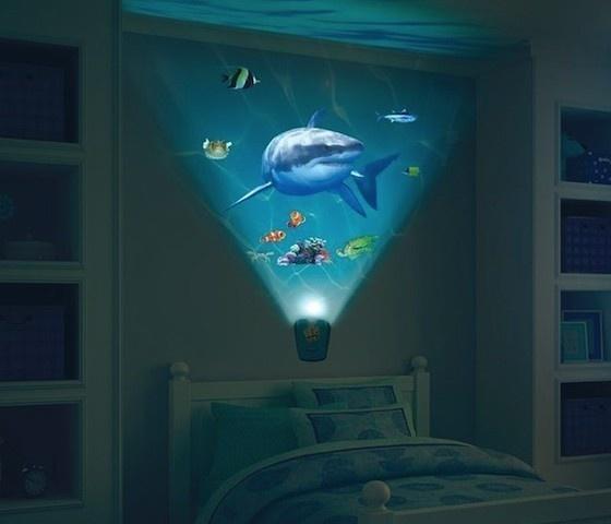 Wild Walls Shark Encounter #home