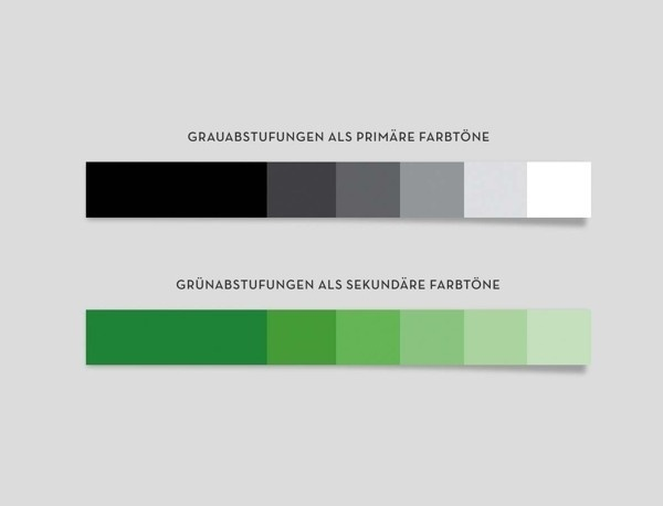 Mata Atlantica on Behance #color #colour