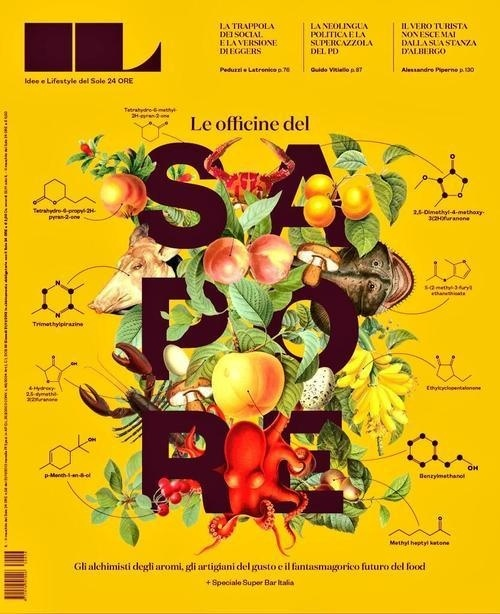 IL Intelligence in Lifestyle (Milan, Italie / Italy) #magazine