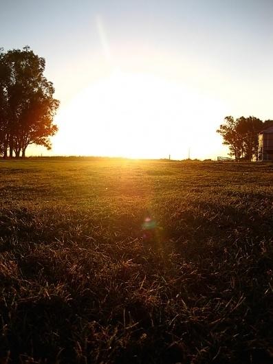 landscapes : ledezign #field #argentina #landscape #photography #countryside #sunset