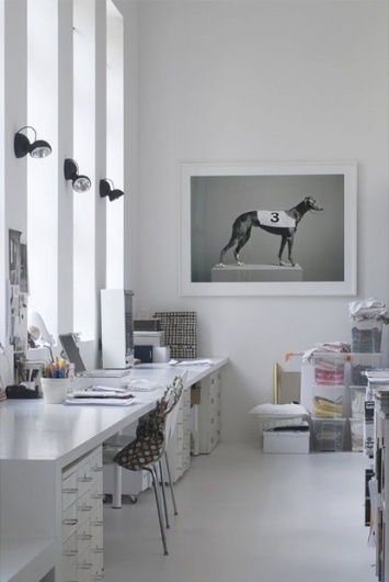 Baubauhaus. #interior #creative #white #office #design #dog