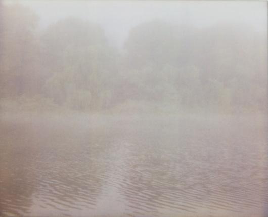 fieldguided — photographic print, fog 1, 6x8 #fog #photographic #print #feild #guided
