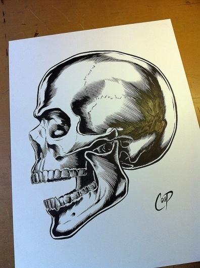 Positive Ape Index #illustration #coop #skull