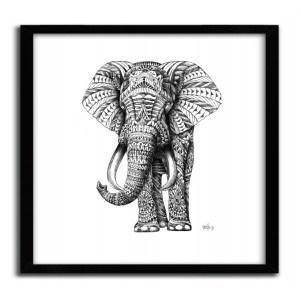 ORNATE ELEPHANT BY BIOWORKZ #print