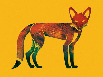 Fox Illustration #illustration #fox #perryman