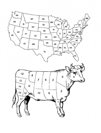 Dan Bina #bina #dan #cow #digital #america #collage