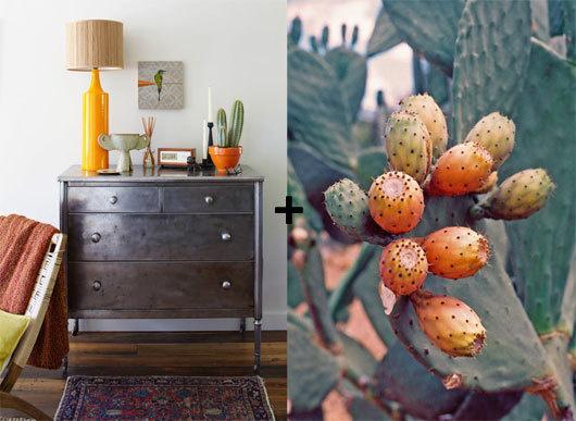 anthology and miss moss #interior #design #decor #deco #decoration