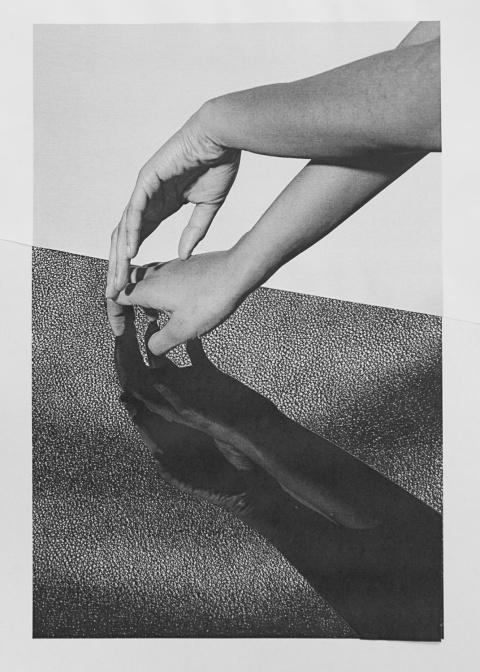 Ramon Haindl   PICDIT #collage #art